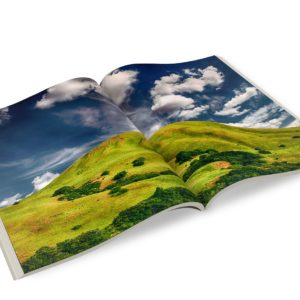 trade-bindery-quotes-perfect-bound-4